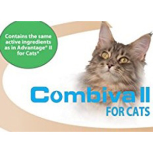 combiva-cats-box