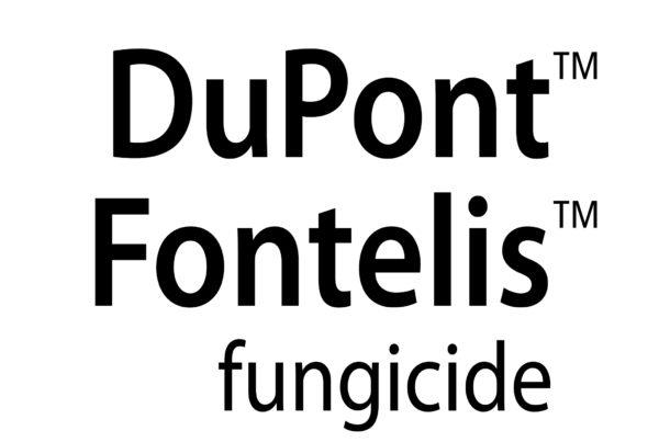 dupont-fontelis-logo