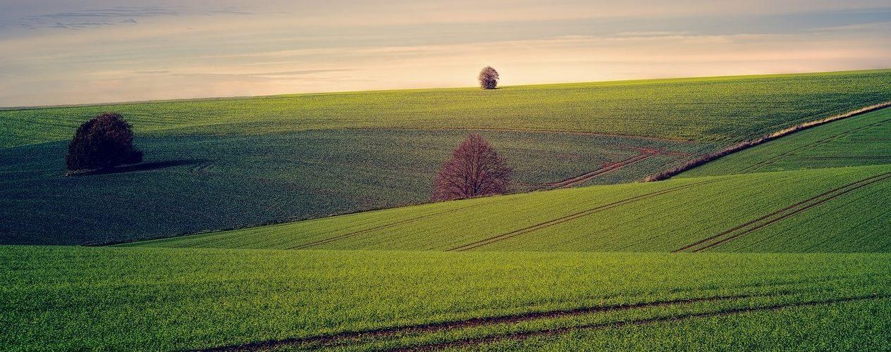 agriculatural-600