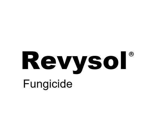 BASF-Revysol-origin-branding